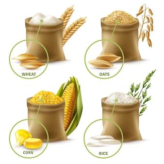 Conjunto de cereais agrícolas