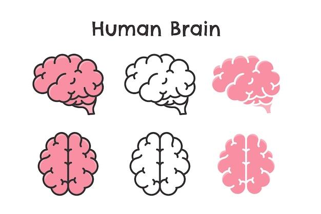 Conjunto de cérebro humano Vetor Premium