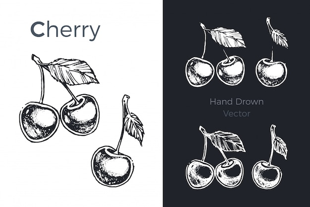 Conjunto de cereja de mão desenhada