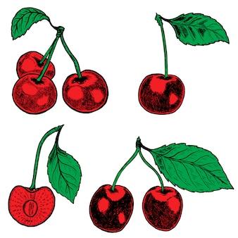 Conjunto de cereja desenhada de mão. elementos para cartaz, menu. ilustração.