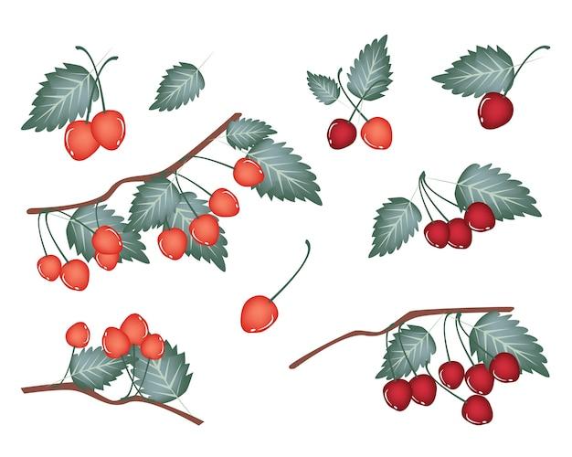 Conjunto de cerejas vermelhas no fundo branco Vetor Premium
