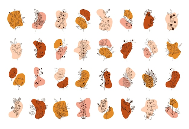 Conjunto de círculos de cores diferentes. plantas tropicais, folhas e galhos com flores. estilo desenhado à mão.