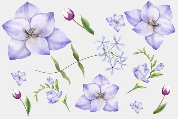 Conjunto de clipart de vetor de aquarela flores desabrochando