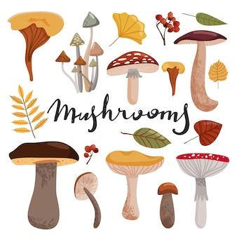 Conjunto de cogumelos e folhas de outono.