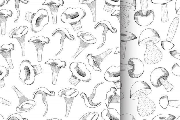 Conjunto de cogumelos sem costura padrão esboço desenhado de mão