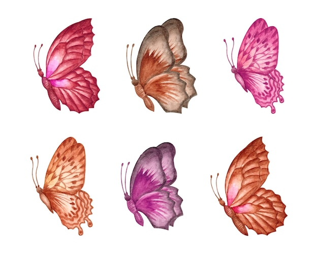 Conjunto de coleção de borboletas em aquarela lindas desenhadas à mão
