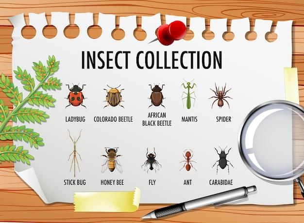Conjunto de coleção de insetos com elementos fixos em cima da mesa