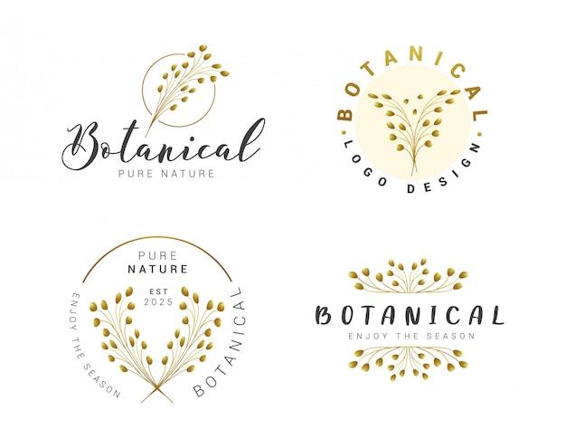 Conjunto de coleção de logotipo botânico floral bonito