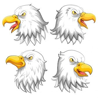 Conjunto de coleção de mascote de cabeça de águia em um branco