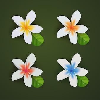 Conjunto de coleta 3d realista de flores plumeria de verão