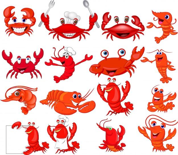 Conjunto de coleta de camarão e caranguejo de desenhos animados