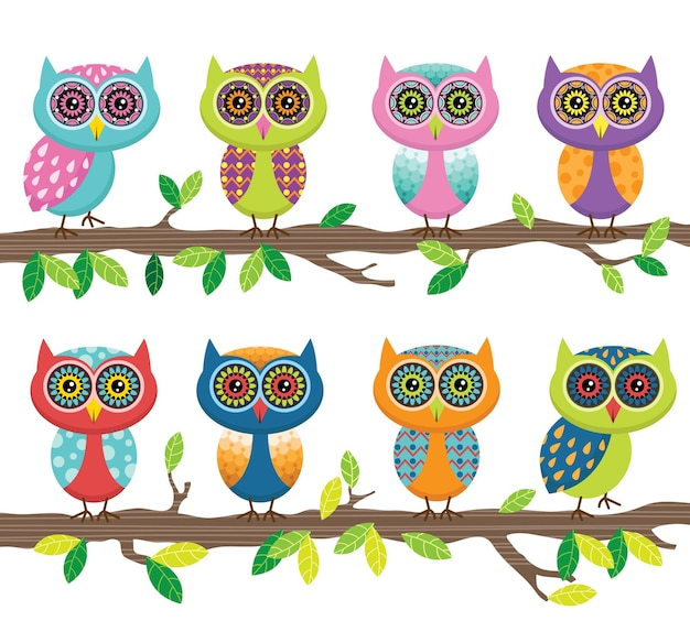 Conjunto de coleta de coruja fofa colorida