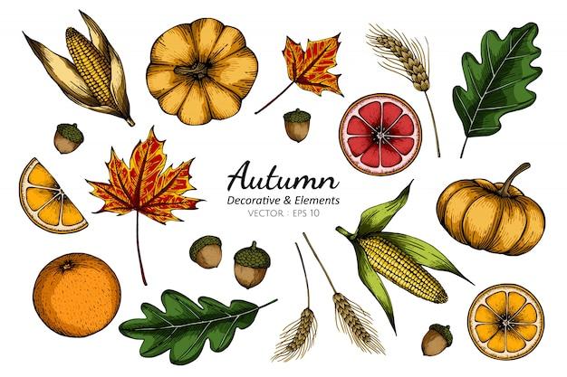 Conjunto de coleta de flor de outono e folhas