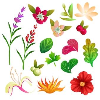 Conjunto de coleta de flores e folhagens