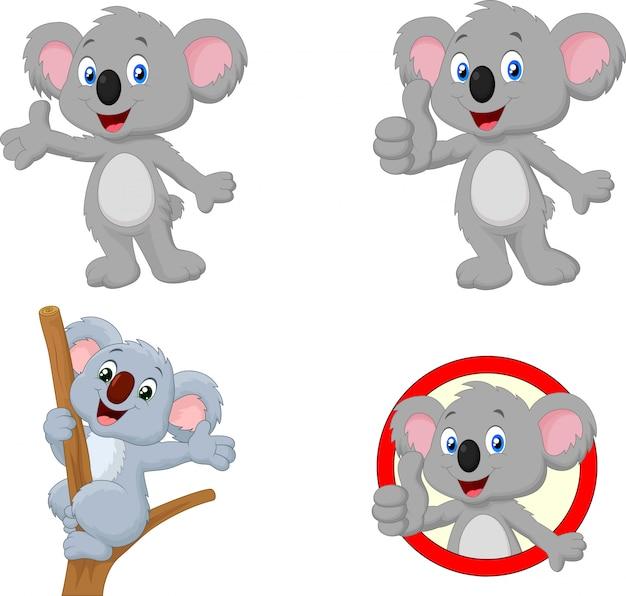 Conjunto de coleta de koala feliz dos desenhos animados