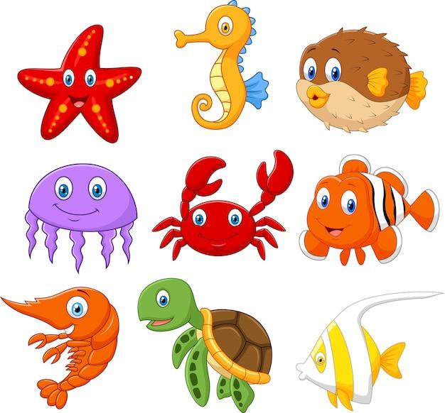Conjunto de coleta de peixe dos desenhos animados