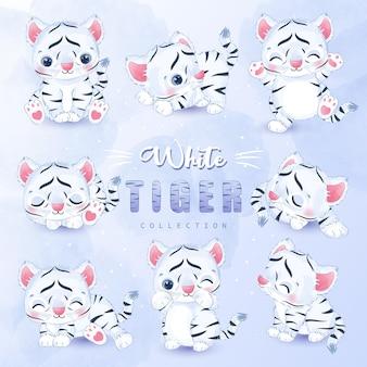 Conjunto de coleta de tigre branco fofo