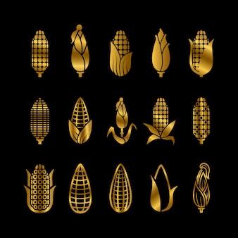 Conjunto de colheita de milho dourado fresco