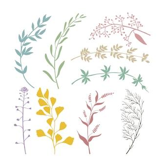 Conjunto de componentes florais para decoração de cartões