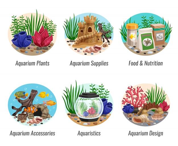 Conjunto de composições de aquário