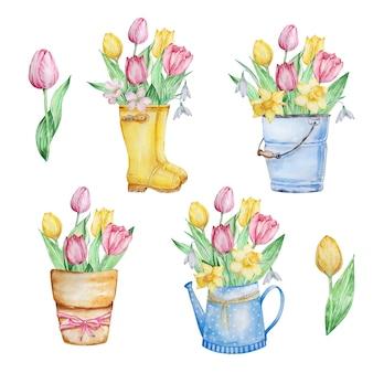 Conjunto de composições em aquarela, flores de primavera, botas, balde regador com narcisos de tulipas