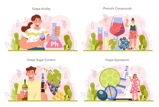 Conjunto de conceitos de produção de vinho. vinho de uva em garrafa ou copo. características da bebida alcoólica. seleção de uvas, acidez e teor de açúcar. ilustração vetorial plana