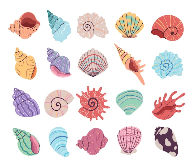Conjunto de conchas de ostras tropicais subaquáticas