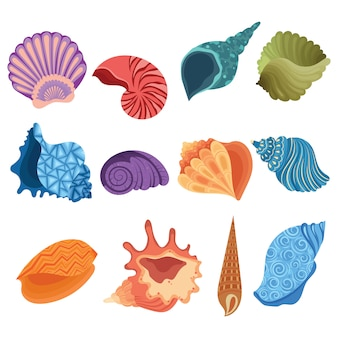 Conjunto de conchas dos desenhos animados. coleção de conchas do mar com pérolas.