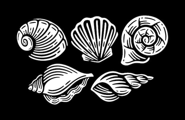 Conjunto de conchas isoladas em preto