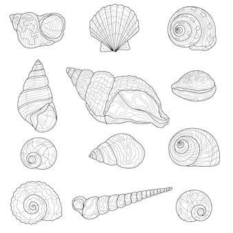 Conjunto de conchas. livro anti-stress para colorir para crianças e adultos. ilustração isolada no fundo branco. estilo zen-emaranhado. desenho em preto e branco