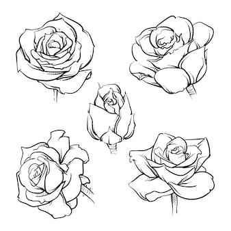 Conjunto de contorno de flores rosa.