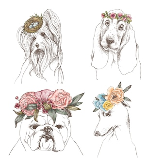 Conjunto de contorno desenhado de mão de cães engraçados