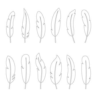 Conjunto de contornos de penas, ilustração vetorial
