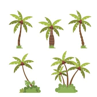 Conjunto de coqueiros, plantas verdes botânicas, vegetação, coleção floral, ilustração