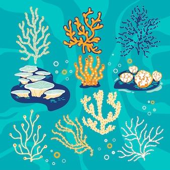 Conjunto de corais e esponjas do mar, ilustração subaquática