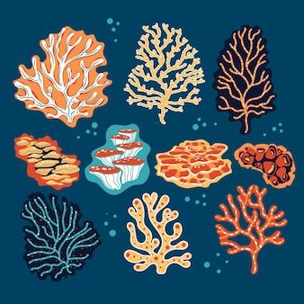 Conjunto de corais e esponjas do mar