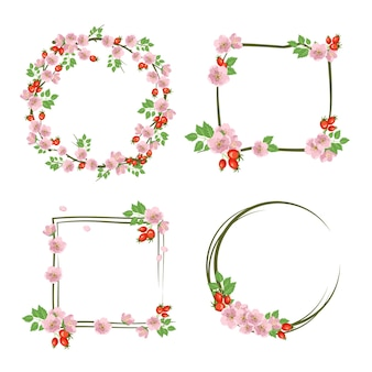 Conjunto de coroa de flores de rosa mosqueta. moldura redonda e quadrada, rosa bonito e flores e frutas.