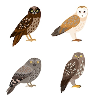 Conjunto de coruja diferente. desenho animado da bela floresta voando personagem de ornitologia, pássaros noturnos com penas marrons, ilustração vetorial de corujas isoladas no fundo branco