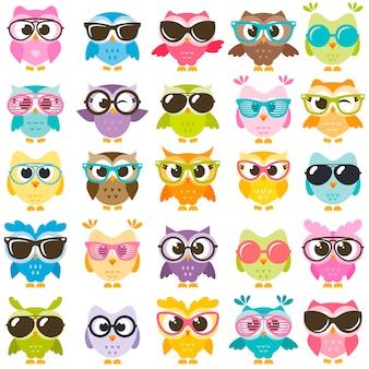 Conjunto de corujas coloridas com óculos