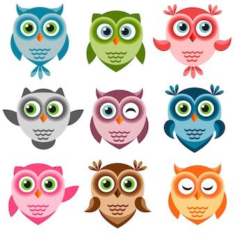 Conjunto de corujas de desenho animado colorido bonito