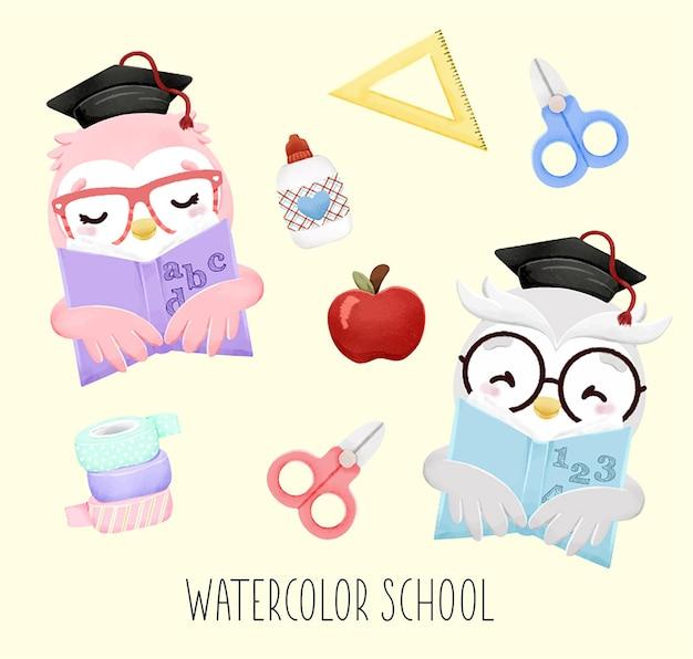 Conjunto de corujas em aquarela e elementos escolares