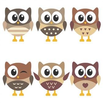 Conjunto de corujas marrons fofas