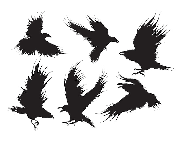 Conjunto de corvos ou corvos negros voando em silhueta