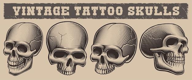 Conjunto de crânios de ilustrações vintage no fundo claro