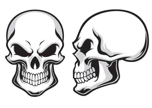 Conjunto de crânios dos desenhos animados