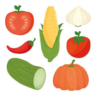 Conjunto de deliciosos vegetais frescos