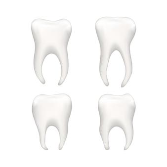 Conjunto de dentes humanos realistas brilhantes em branco