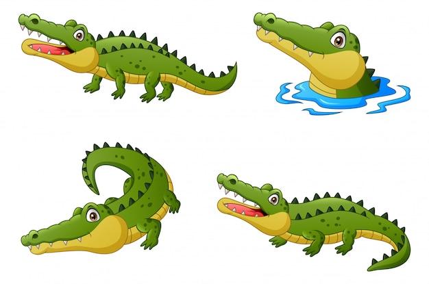 Conjunto de desenho animado engraçado crocodilo. ilustração