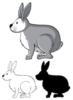 Conjunto de desenho de coelho