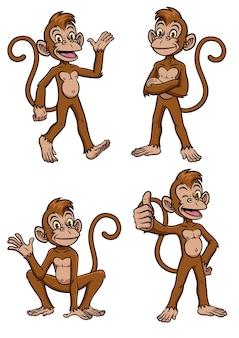 Conjunto de desenho de macaco